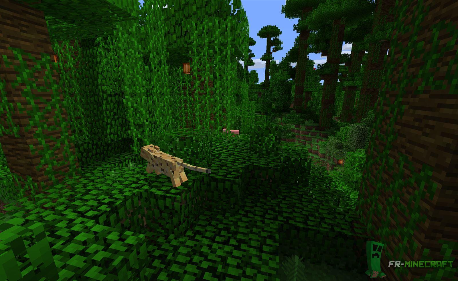 minecraft biome jungle