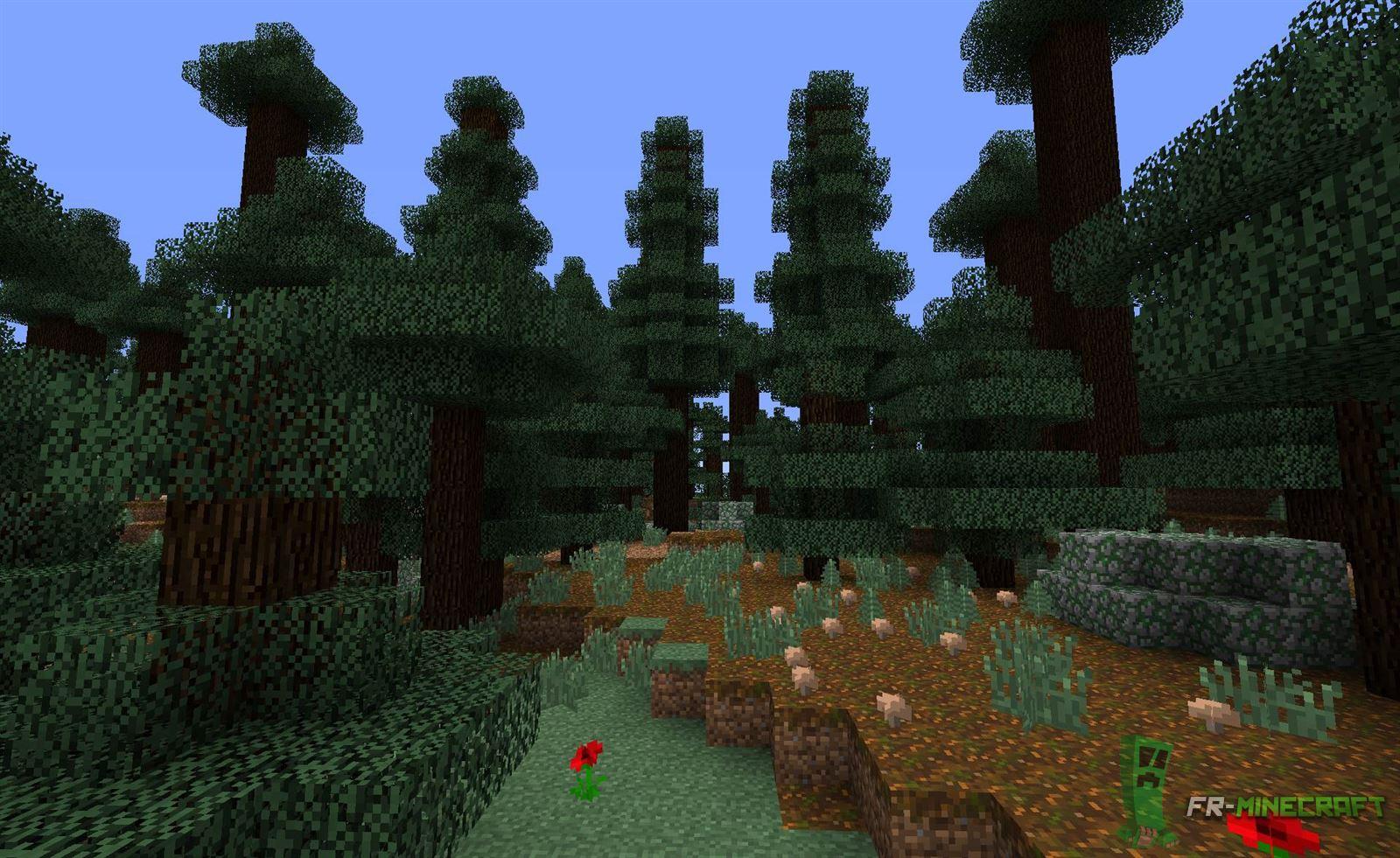 minecraft biome ta ga grands arbres. Black Bedroom Furniture Sets. Home Design Ideas