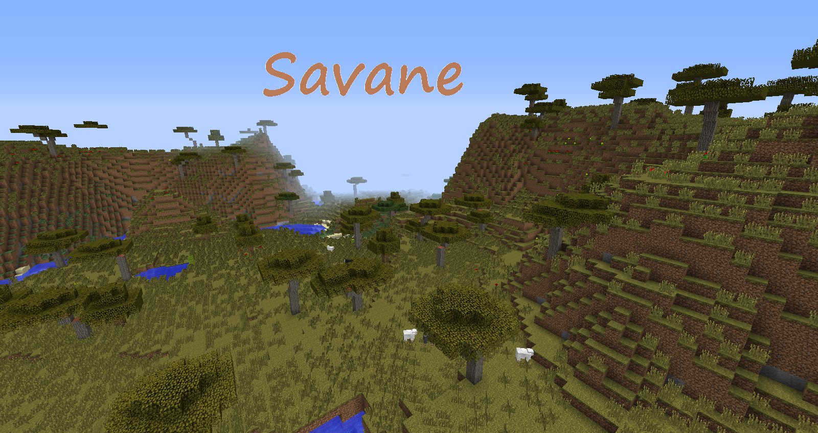 minecraft savanna