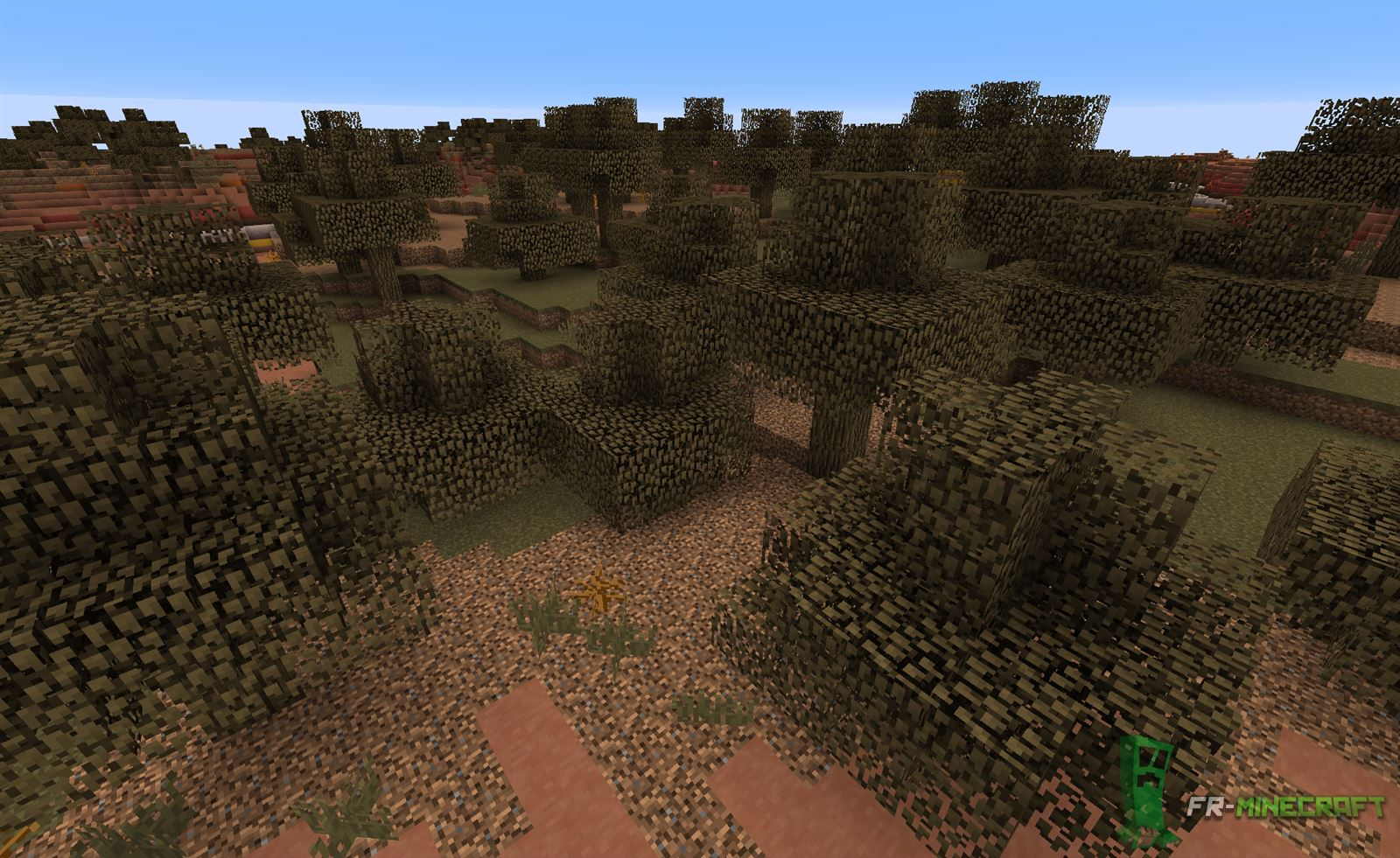Minecraft Terre Cuite