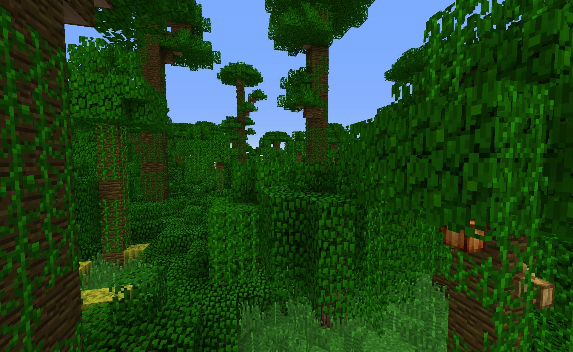 мыши джунглей майнкрафте