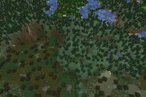 Forêts à perte de vue