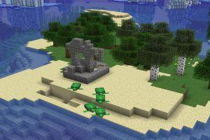 Ruines & Tortues